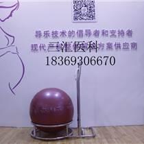 导乐球架分娩球支架哪里可以买到 是干什么的