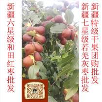東莞市正宗新疆干果和田駿棗 甜蜜香郁 味香迷人 棗厚肉實
