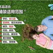 新疆幼儿园草坪销售