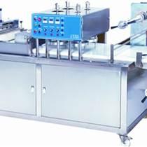手抓餅生產線制造 辰品供 服務佳的手抓餅生產線制造商