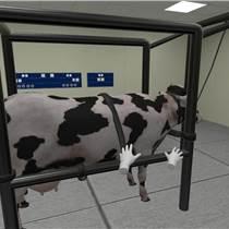 VR医疗培训之牛瘤胃虚拟仿真实验