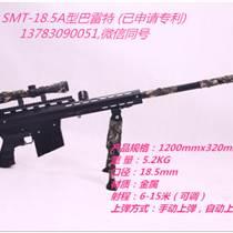 济南气炮厂家,气炮枪图片,射击气炮新玩法