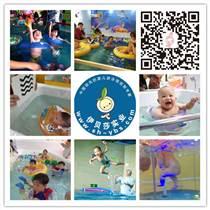 伊贝莎青浦区婴儿游泳馆加盟泳池厂家