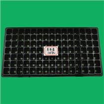 105孔加厚花卉育苗盤芽苗育秧盆