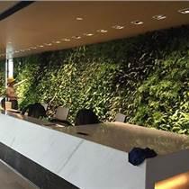 和泓景观、植物墙施工、云南植物墙施工