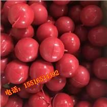 大仓机械生产振动筛专用橡胶球硅胶球/防堵塞清网球