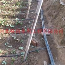 黑色塑料滴水管|大棚喷灌内蒙古乌兰察布打孔器