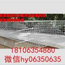 泉城籠業直銷蛇籠熱鍍鋅折疊捕蛇籠質量保證支持批發定做