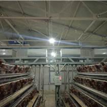 山东养殖设备养殖场自动喂料机上料机龙门上料机