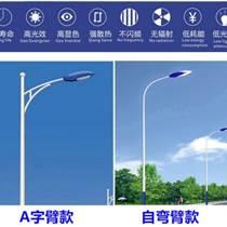 江苏弘光照明生产路灯厂家8米户外防水新农村led道路高杆灯