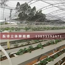 邯鄲無土栽培種植槽