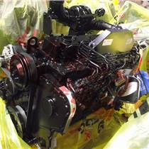 东风康明斯6c8.3/6cta8.3发动机总成