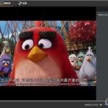 P2P視頻播放器開發選擇公司還是個人