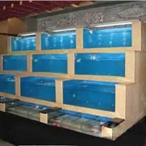 天河客運站哪里定做海鮮魚池,廣州長興路定做酒店海鮮池,海鮮魚池制冷魚池,海鮮池價格