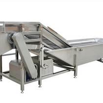 BOER-QX-013高品质果蔬清洗机 气泡清洗机