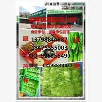深圳市松岗镇蔬菜配送