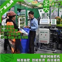 廣東果樹施肥器廠家 廣州掛綠荔枝種植灌溉水肥一體化機滴灌設備