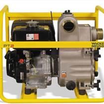 農田灌溉用威客諾森PT 3A高性能泵,市政排污泵