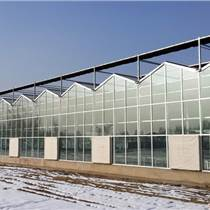 承接鸡西/密山/虎林温室大棚育苗室生态餐厅