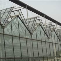 承接鹤岗绥滨县温室大棚育苗室生态餐厅花卉大棚
