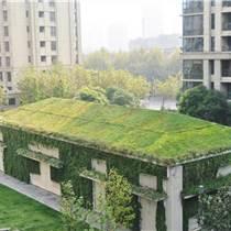 湖南草字头生态屋顶绿化