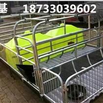 出售母猪产床双体分娩栏