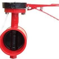 Z41X-16明桿彈性座封閘閥閥體采用綠色環保環氧樹脂噴涂