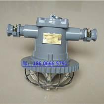 DGS20/127L(A)矿用隔爆型LED巷道灯