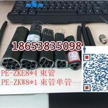 甘肅PE-ZKW86束管分路箱,束管配件