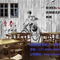 酒店咖啡馆商业壁画/KTV主题壁画定制/豪瑞壁画