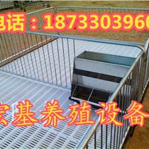 出售双体小猪保育床铸铁猪产床