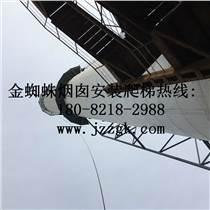 龙岩市烟囱S型爬梯安装工程客服热线