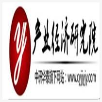 高尔夫球-中国市场运营态势与未来发展战略研究报告20