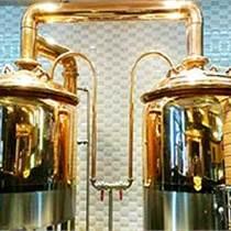 德工dg-100L小型啤酒设备