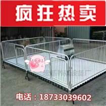 厂家供应双体小猪保育床铸铁加重育肥栏