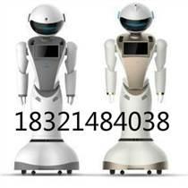 大连人工智能机器人公司