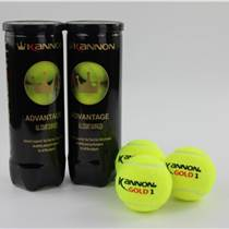 苏州少儿网球培训 博跃供 少儿网球培训实时报价