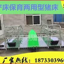 河北宏基养猪设备厂家供应母猪产床 产保一体床