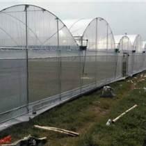 連棟大棚創新,新型溫室,廣州大棚,開天窗連棟棚