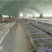 廠家生產發泡水泥保溫板 難燃水泥發泡板價格