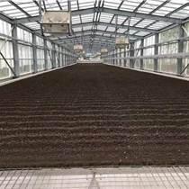 供應煜林楓脫水污泥干化處理系統
