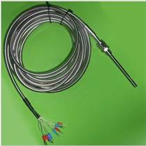 进口铂热电阻 定制热电阻生产厂家 PT100热电阻