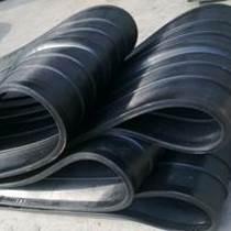 水廠用中埋式橡膠止水帶