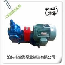 廠家直銷 YCB圓弧齒輪泵 高壓耐磨泵