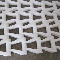 非金属刮渣机塑料链条