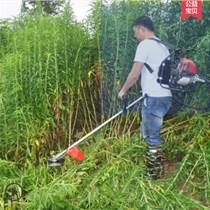 公园草坪专用割草机 小型割草机