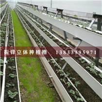 邯鄲蔬菜立體種植槽價格