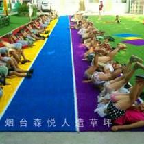 仿真运动草坪地毯普通人造草皮假草坪幼儿园人造草坪草皮