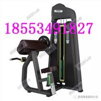 商用室内健身器材45度二头肌训练器价格