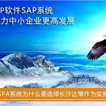 湖南SAP代理商 湖南SAP B1供应商及实施商选择